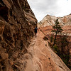 Zion National Park - Courage