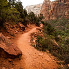Zion Trails