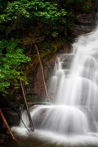Three Logs Red Fork Falls