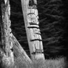 Ancient Haida Totems