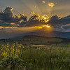 Sunset on the Grasslands