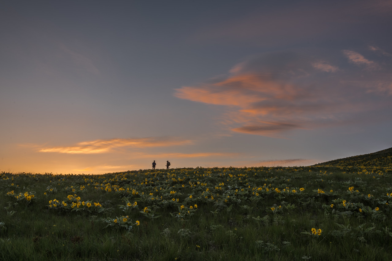 Sunset and Hikers at the Butte