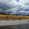 Fall Colour along the Flathead River