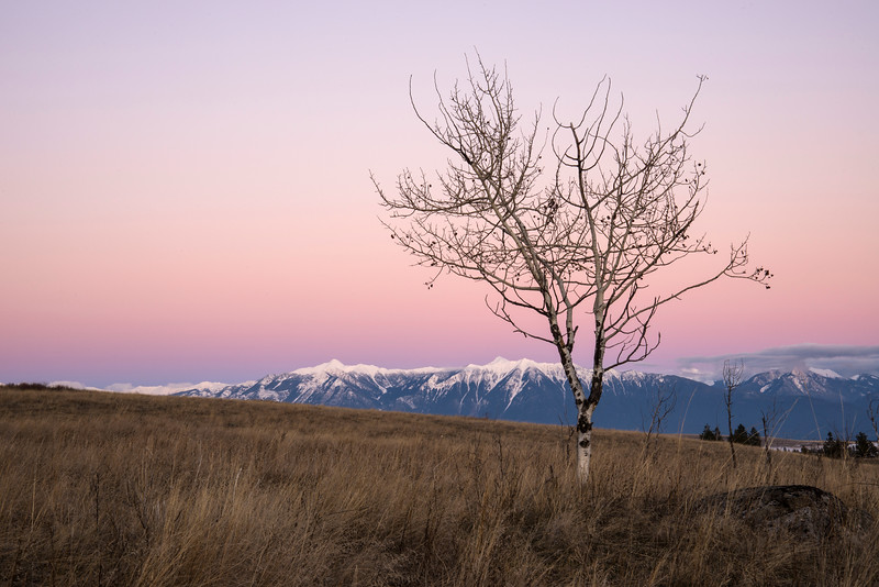 After The Sun Has Set - Wycliffe Prairie