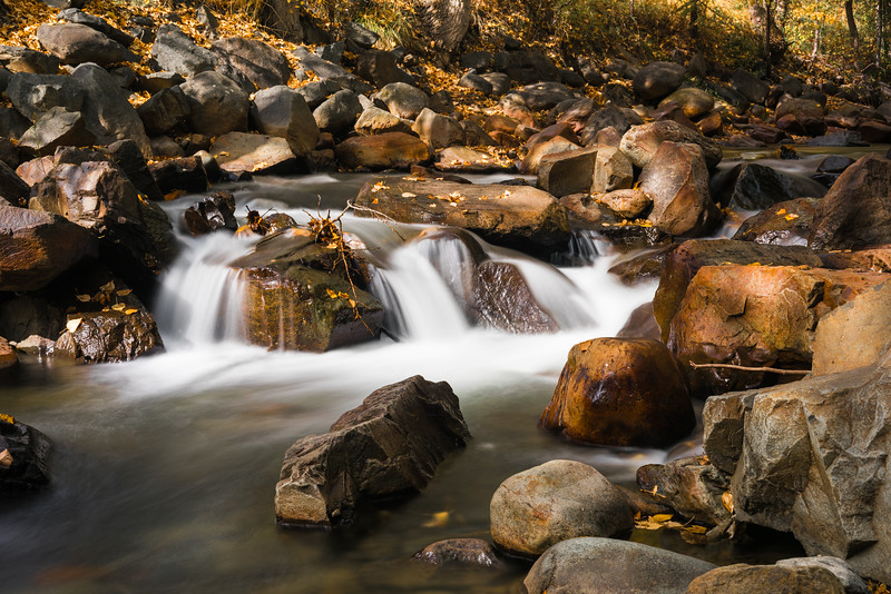 Autumn along Mark Creek