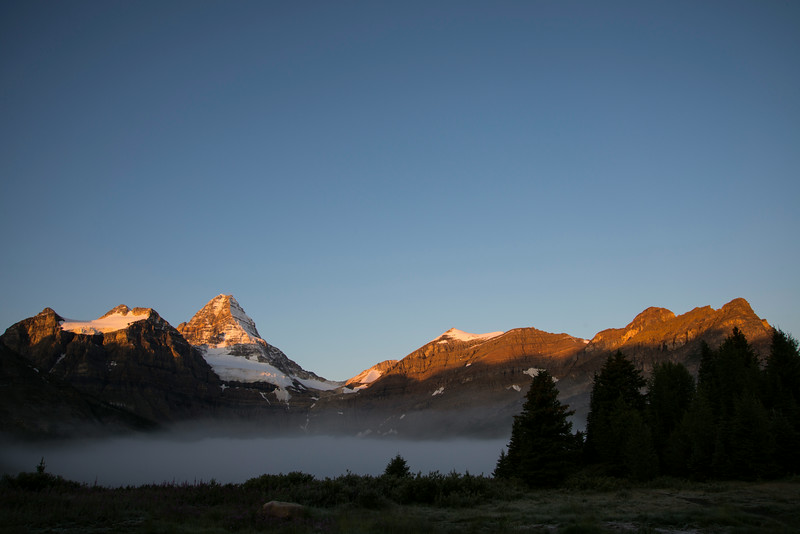 Sunrise at Mount Assiniboine