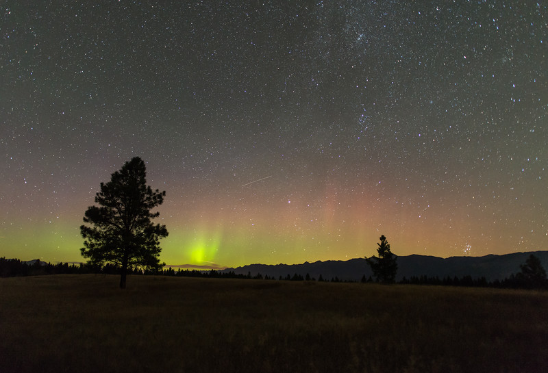 Northern Lights over the Northern East Kootenay