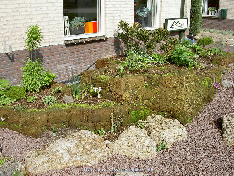 front garden, peat wall