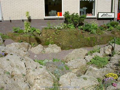 front garden / peat wall