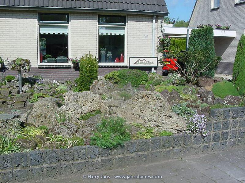 old front garden