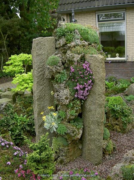 Tufa Colunm & Daphne arbuscula