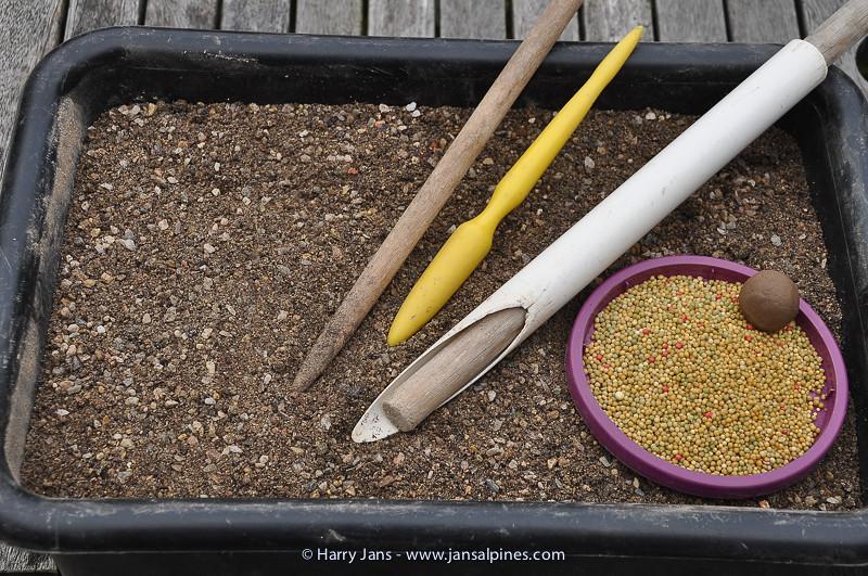planting tufa stone