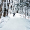 Senior skiier descending a hill through a beautiful natural forest on fresh snow