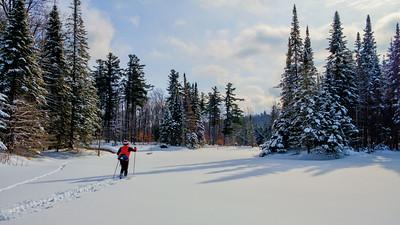 Heading for the hills. Senior man making fresh ski tracks across a beaver pond in a scenic natural area.
