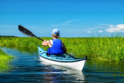 Female kayaker in creek winding through salt marsh
