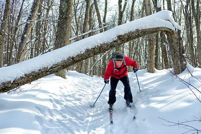 Senior man has a close call skiing under a fallen tree