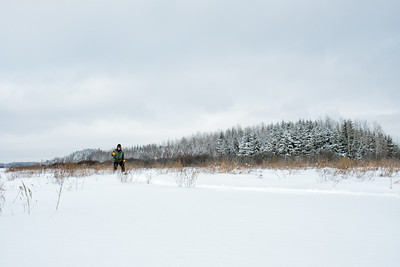 Senior male under slate sky on snowshoes in bog on a cold winter day
