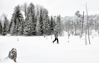 Senior man skiing across a muskeg beaver pond in a winter wonderland