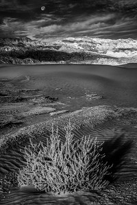 Black and white image of moon over the Mesquite Dunes in Death Valley National Park California