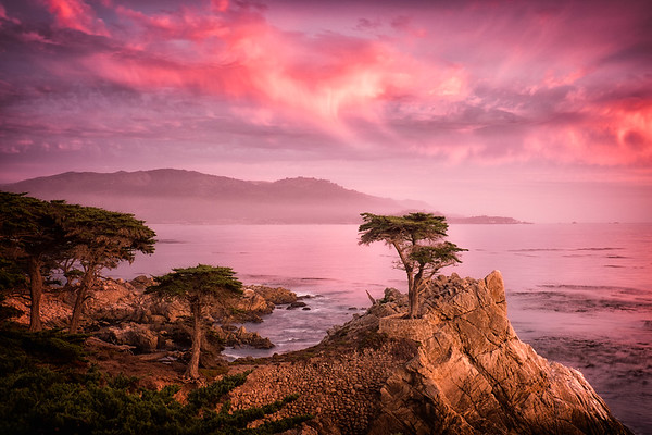 Sunset and the Lone Cypress in Monterrey California