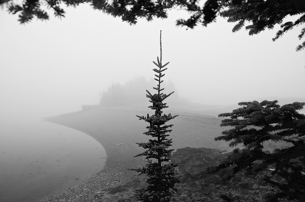 Great Spruce Head Island, Maine