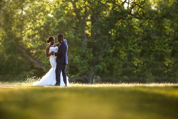 ugandan wedding photos at Hylands House, Essex