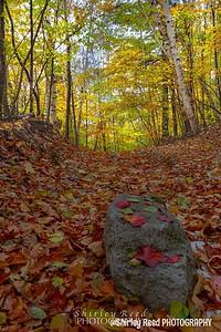 Hiking Bartlett Mountain