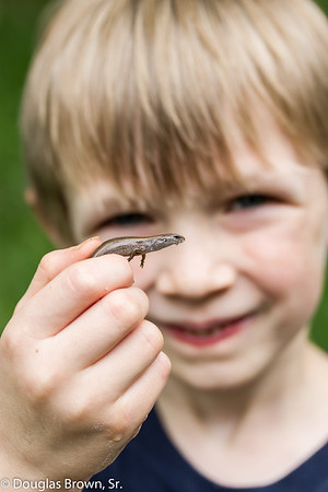 Boy and his Skink