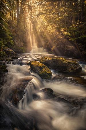 Enchanted Light