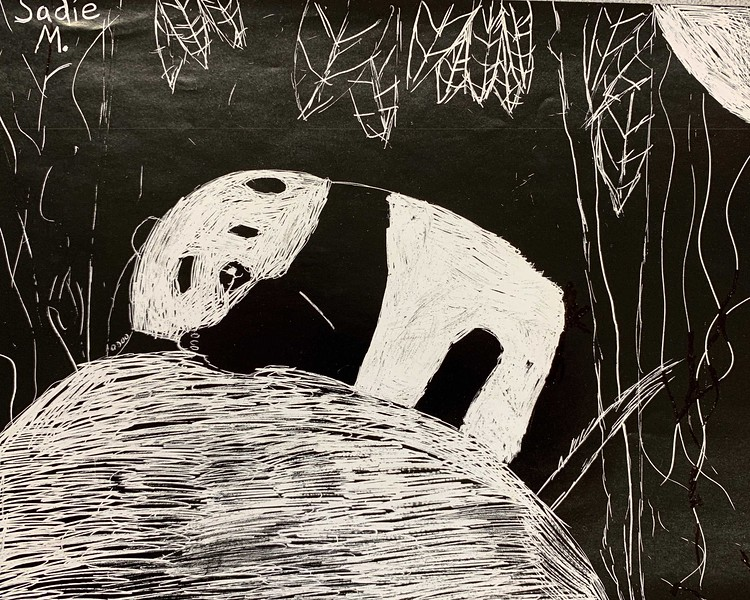 "Sadie Morrison, grade 4 ""Panda"" scratch art 8.5""x11"""