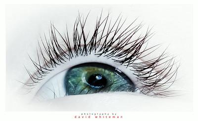 Eye See