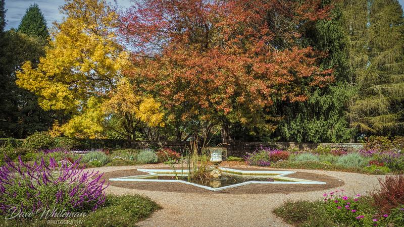 The Celestium in Autumn