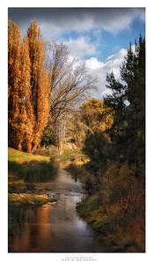 Adelong Creek in Autumn