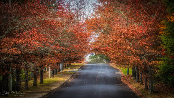 Autumn Finally Arrives
