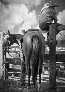 The Stockman... Highly Commended 2011 Penrith Show