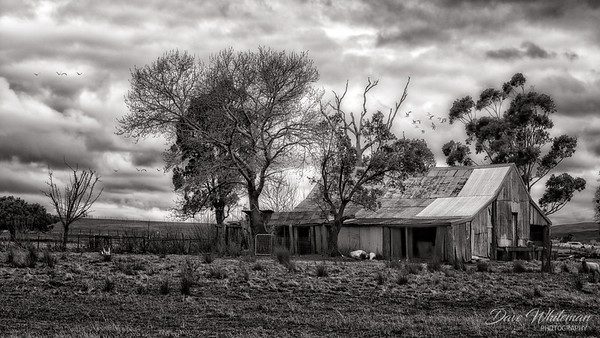 Old Shearing Shed at Lyndhurst.