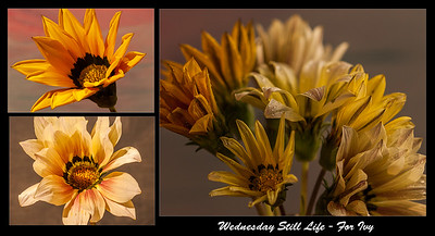 Wednesday Still Life - for Ivy