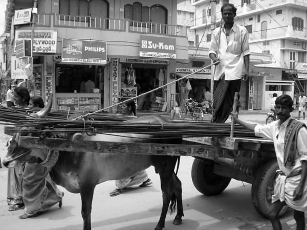 Indian Truckers