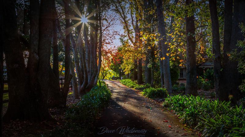 Autumn Afternoon Tyreel Homestead
