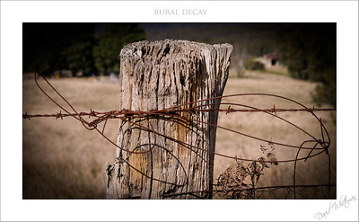 Rural Decay - Highly Commended Penrith Show 2012
