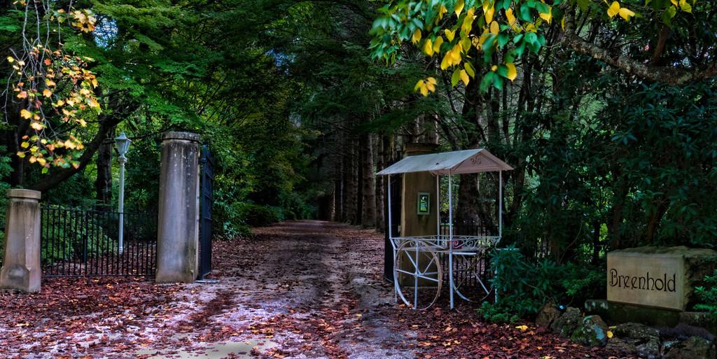 Breenhold Gardens Mt Wilson