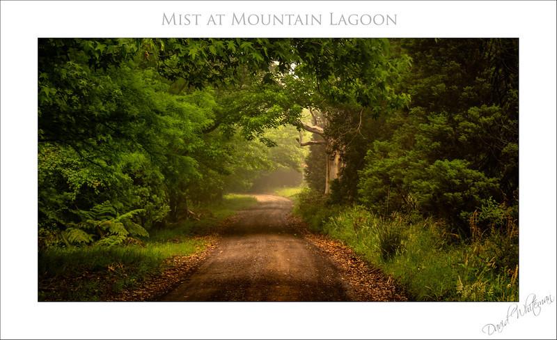 Mist at Mountain Lagoon