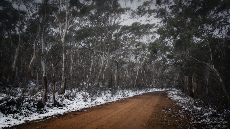 Winter Snows on Mt Trickett