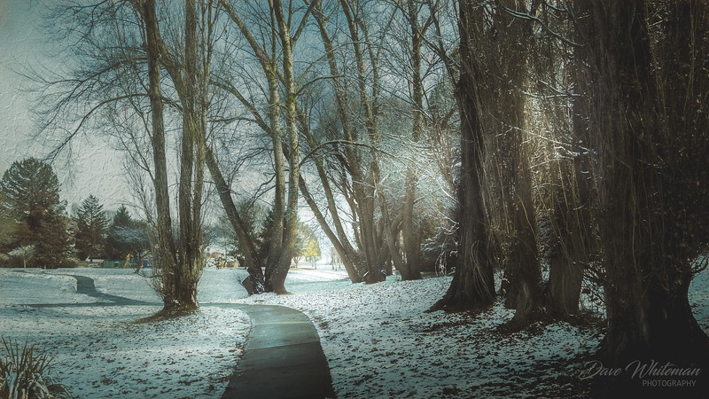 Snow on the Common