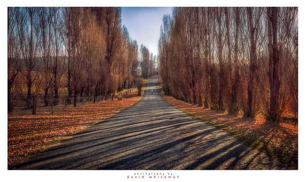 Autumn Meadow Flat