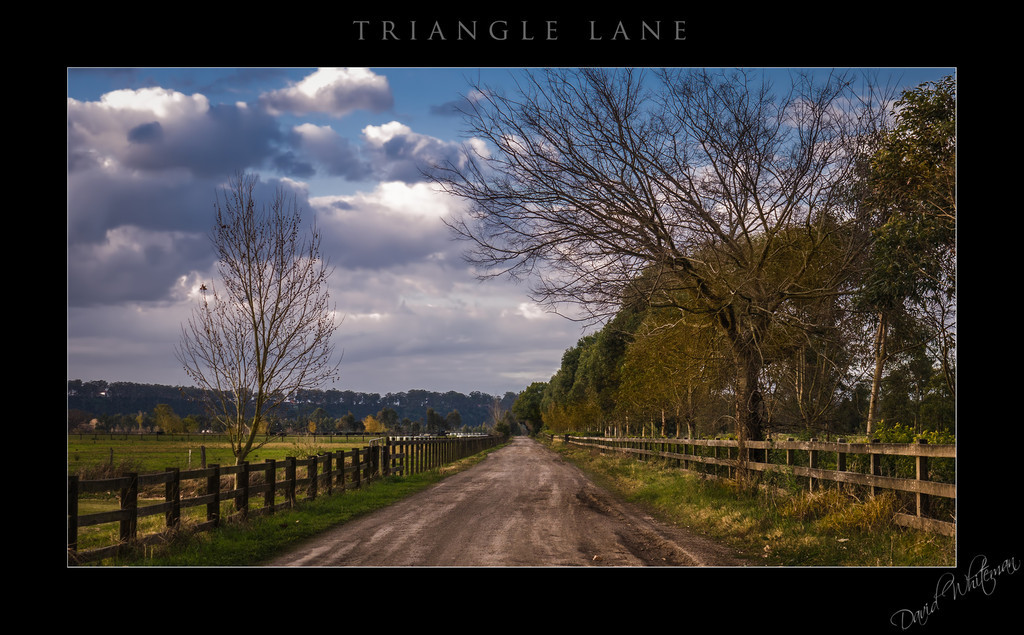 Triangle Lane
