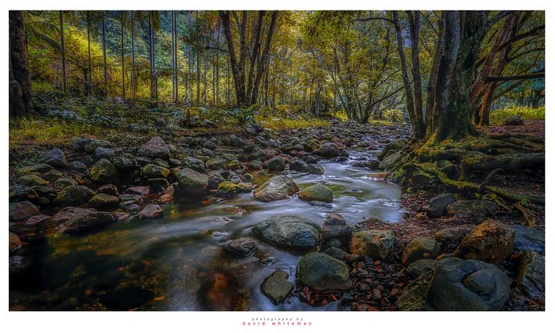 Korrumbyn Creek in Autumn