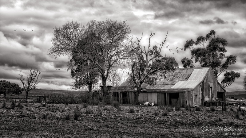 Old Shearing Shed at Lyndhurst.