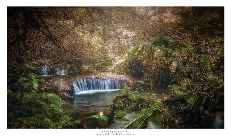 Hidden Jungle Waterfall
