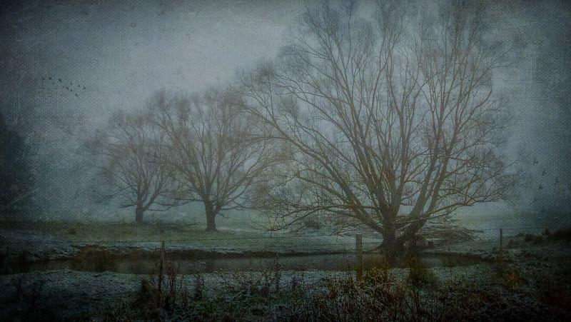 Winter in Edith